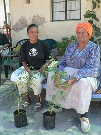 Planting trees as a part of NaDEET's 365 Trees Project