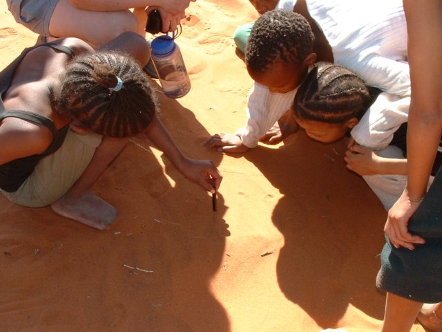 Exploring magnetic properties of Namib sand