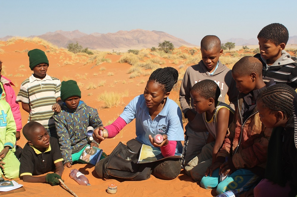 Explaining where the Namib sand comes from