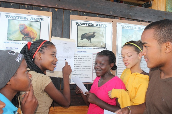 Secondary students discuss endangered species